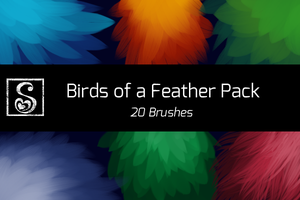 Shrineheart's Birds of a Feather Pack - 20 Brushes by Shrineheart