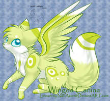 Winged Canine adopt -closed- by gold-adopts