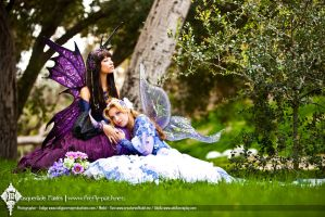 The Fairy Grove by Lillyxandra