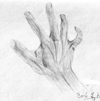 Back of Hand by Geak-of-Nature