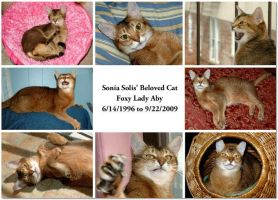 Foxy Lady Aby Commemoration by Soniafm1027