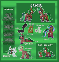Jaeger Reference Sheet by Kaji-Tani