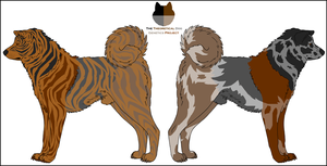 Dog Genetics Examples: Brindle and Merle by Leonca