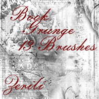 Book Grunge Brushes By: Zerili by Zerili