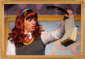 Ginny and The Diary (Avpsy script) by apdrea