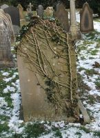 Grave Marker 04: Ivy Headstone by fuguestock
