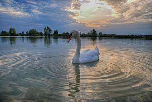 Queen of the lake 3 by adamcroh