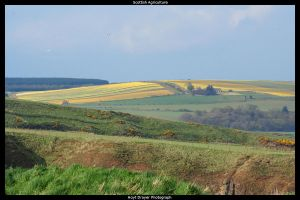 Scottish Agriculture by HerrDrayer