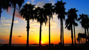 Sunrise in Dunedin, FL by captainrumdum