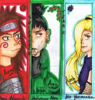 Shippuden team 10 by Xiaolinlover