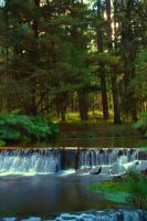 Healesville Creek HDR by Braunaudio