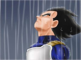 Vegeta in the Rain by carapau