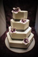 wedding cake 157 by ninny85310