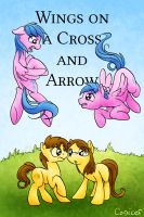 Wings on a Cross and Arrow Cover by Conicer