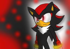 Shadow The Hedgehog by XxVonnesMChotneesxX