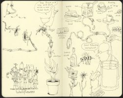 Doodles from Saint Petersburg by MattiasA