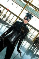 Catwoman by Melima51