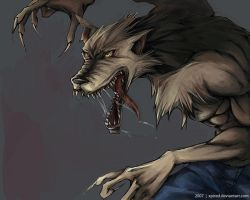 Werewolf by xpired