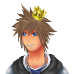 Sora by Icedragon300