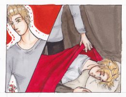 APH Denmark and Netherlands by AnnHolland