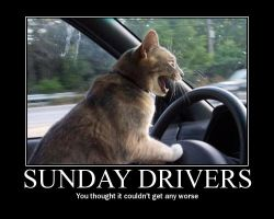 Sunday Drivers 'Motivator' by ItchyBarracuda