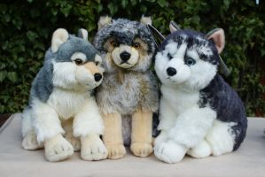 Aurora plush Wolves and Husky by Huskyplush