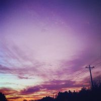 Purple Sunset by shelbyrenee