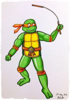 Teenage Mutant Ninja Turtles - Michelangelo by finance-in-my-pants