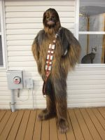 Chewbacca by Zaxmon