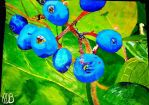 Wild Berries by WowLovely88