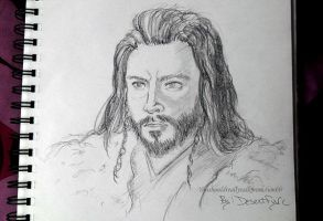 Thorin_ Before the Dawn by Desertfire