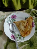 Artistic plate and samosa by wolflogics