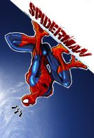 Spider man color by Zherj