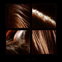 Hair of a horse I by vadalein