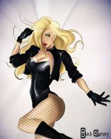 Black Canary 2 by Blackpeppermilk