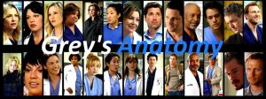 Grey's Anatomy Then and Now by BookWizard