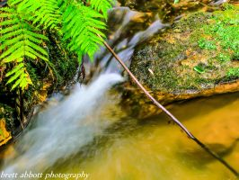 small river inlet by hamptonboss
