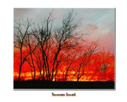 Tennessee Sunset_Auto WB by sacredspace