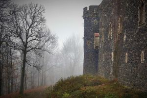 Grodziec Castle In Winter 7 by CitizenFresh