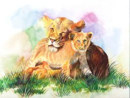 lioness and cub by aditipagez