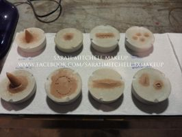 Plate Molds by sarahmitchellmakeup
