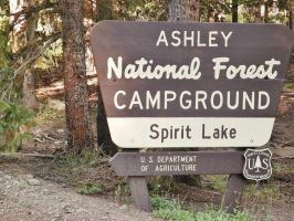 National Forest by MayasAdventures