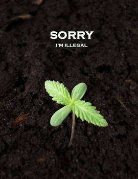 Sorry, I'm Illegal by eternalrabbit