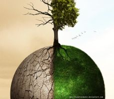 Drought and the abundance by renanciocmonte