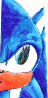 Sonic's Face by Mecha-fox-cat-rabbit