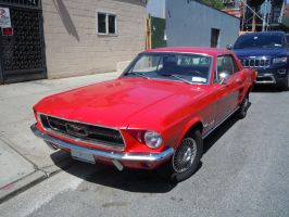 1967 Ford Mustang II by Brooklyn47