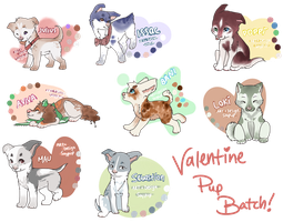 Valentine Puppies For Sale by soyPup