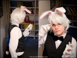 White Rabbit by aruftw
