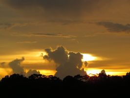 Pasco County Sunset by Malidicus