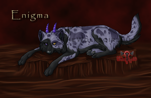 Enigma-2nd Pantha Wolf by TheWolfsgirl90